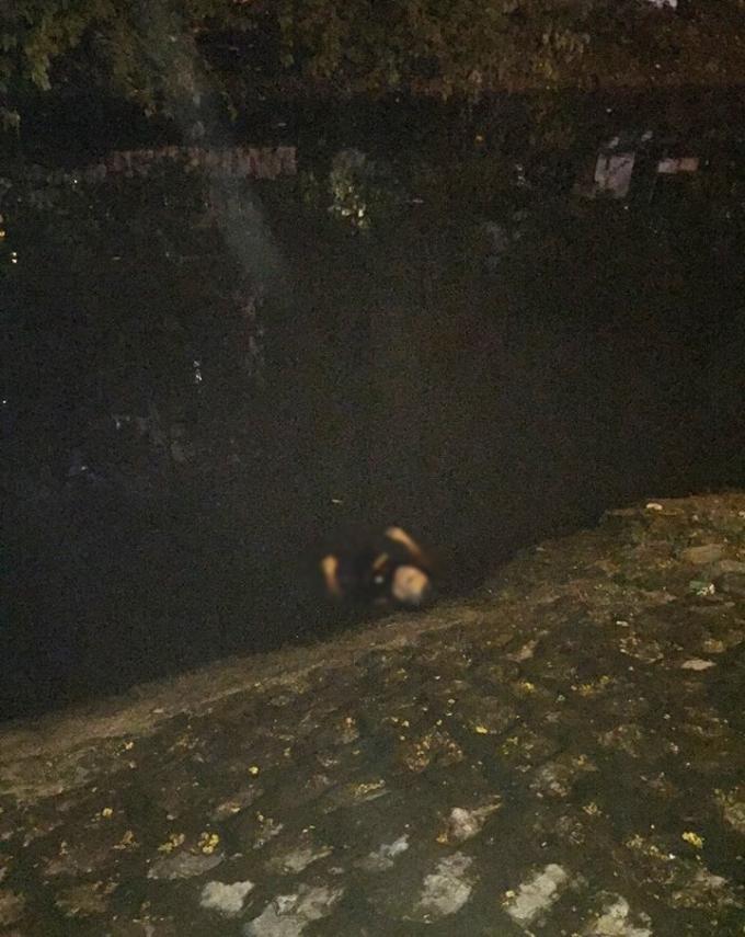 Đối tượng Long sau khi cứa cổ nữ tài xế taxi đã tự đâm vào người mình rồi nhảy xuống sông tự tử bất thành.