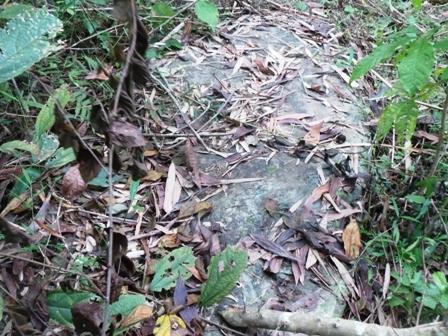 Bia đá bị đào lên nằm trên mặt đất.