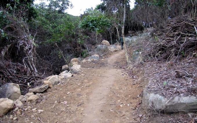 Con đường dân tự phát làm dẫn vào khu vực phá rừng.