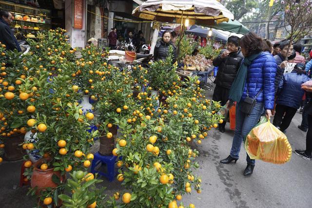 Từ nhiều năm nay, chợ hoa Hàng Lược chỉ tập trung bán các loại đào quất có độ lớn vừa phải theo nhu cầu của người mua. Rất nhiều người dân đi chợ hoa không chỉ để mua hoa mà còn để nhấm nháp hương vị Tết Nguyên đán đặc biệt ở phố cổ Hà Nội.