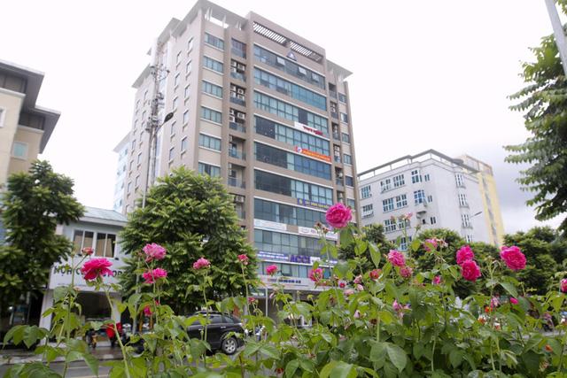 Người dân cho biết, những khóm hoa hồng này mới được trồng thời gian gần đây và mới chỉ ở một bên phần đường.