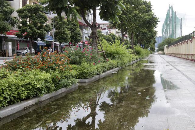 Đây là con đường với nhiều cây xanh được trồng mới, trong đó có rất nhiều loại cây hoa được trồng ven đường.