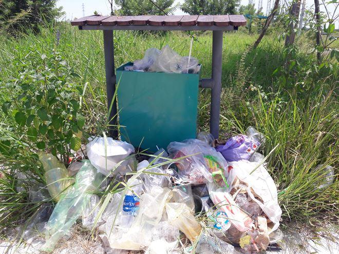 Cỏ xen lẫn với rác thải trong công viên.