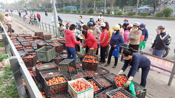 Điểm bán nông sản Hải Dương ở 38 Giải Phóng - Hà Nội.