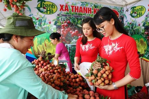 Vải thiều xã Thanh Khê, huyện Thanh Hà được giới thiệu và bán cho khách tại lễ hội vải Thanh Hà 2008. Ảnh:Giang Chinh