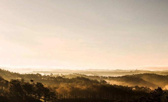 Đà Lạtnằm ở khu vựcTây Nguyên,quanh năm có khí hậu mát mẻ, thích hợp cho phát triển nền nông nghiệp: rau quả, dâu tây, măng tây, cà phê, trà Atiso, hoa hồng... (Ảnh:New York Times)