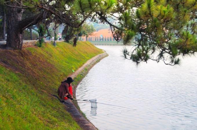 Ví dụ như:hồ Xuân Hương,hồ Tuyền Lâm,...(Ảnh: Cao Anh Tuấn)