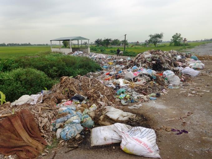 Điểm tập kết rác của xã Ngọc Lũ, rác thải cùng xác lợn chết vứt thành từngđống bốc mùi khó chịu.