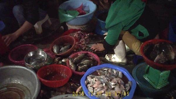 Cá ươn, thối sau khi được lọc thịt... Ảnh: Du Nghĩa.