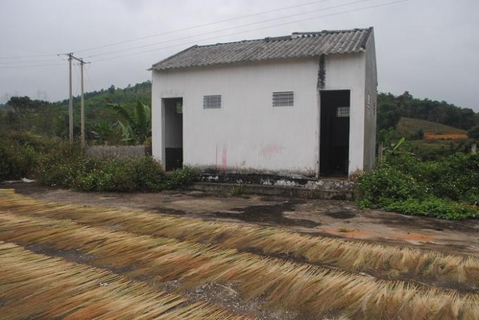 Khu nhà vệ sinh chợ Tiền Phong cỏ mọc xung quanh (ảnh Duy Ngợi).