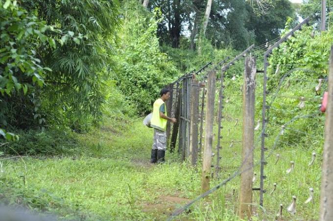 VQG Cát Tiên là khu vực rừng có đa dạng sinh học cao.