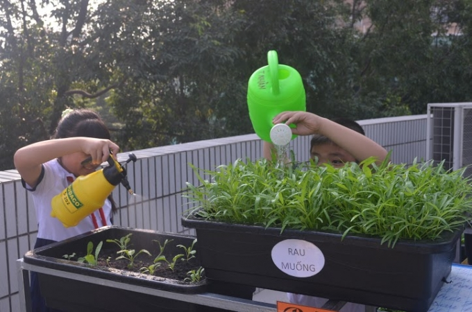 Những giờ ra chơi, các bé có thể tham gia vận động bằng việc tưới nước cho vườn rau.