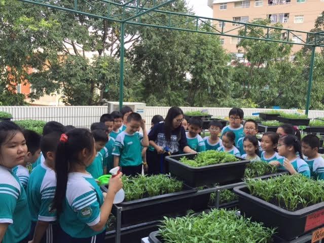 Vườn rau thân thiện không những hỗ trợ các môn học nhà trường như kỹ thuật, tự nhiên xã hội, tập làm văn.