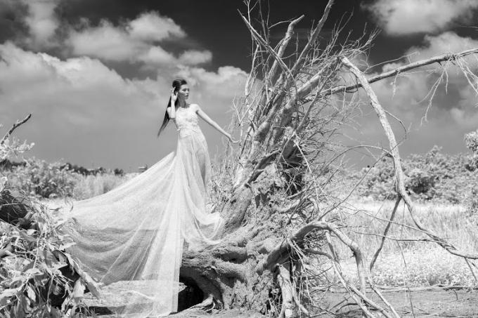 Đây là bộ ảnh được thực hiện bởi nhiếp ảnh Đặng Thanh Tùng, một giảng viên Đại học tại TP HCM, có niềm đam mê với bộ môn nghệ thuật này.