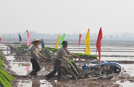 Tân Bí thư Hoàng Trung Hải mong muốn Hà Nội dẫn đầu cả nước về ứng dụng khoa học kỹ thuật vào sản xuất nông nghiệp.