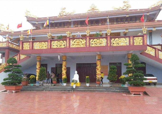 Không khí bình an, thanh tịnh của chùa Đại Giác trong những ngày đầu năm.