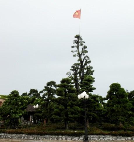 Điểm đặc biệt nhất trong khuôn viên dinh thự có rất nhiều cây kiểng cổ thụ...quý trị giá lên đến cả tỷ đồng.