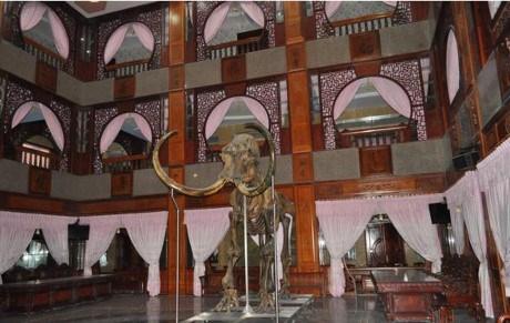 Bộ xương voi ma mút trong dinh thự của đại gia Trầm Bê.