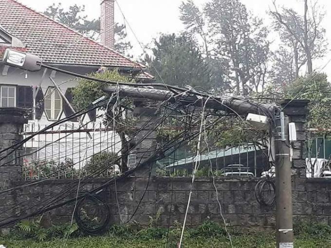 Mưa lớn, gió mạnh quật ngã cây cột điện ở TP Đà Lạt.