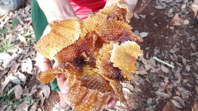 Sáp ong óng vàng