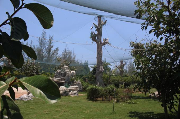Thuộc quần thể nghỉ dưỡng FLC Quy Nhon, FLC Zoo Safari Park được xây dựng trên tổng diện tích 129,1 ha theo mô hình safari chuẩn thế giới, là nơi bảo tồn khoảng 900 cá thể động vật