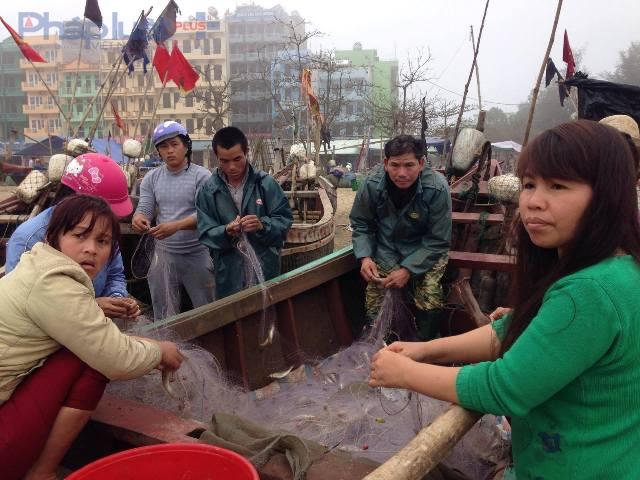 Khúc hoan ca của ngư dân tại bến thuyền Độc Cước khi mẻ cá đầu tiên trở về sau hơn chục ngày dừng hoạt động. (Ảnh: Anh Thắng)