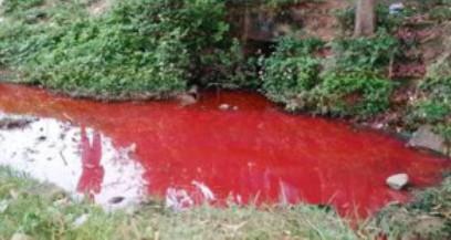 Dòng nước thải từ cống của Công ty TNHH Duyệt Cường có màu đỏ như máu. (Ảnh: A.T)