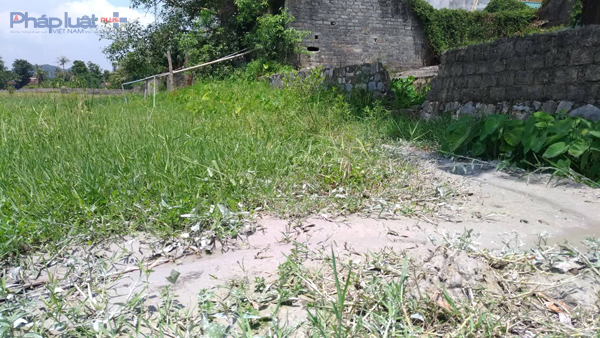 Nước thải bột đá xẻ được xưởng sản xuất Hùng Nhung đổ thẳng ra khu ruộng, không qua bể xử lý. (Ảnh: Anh Thắng)