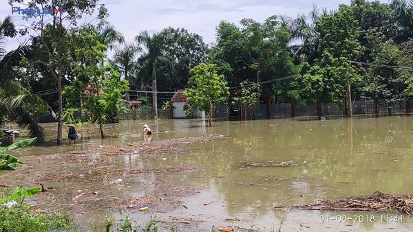 Theo thống kê, đã có 11.791 căn nhà bị ngập chìm trong nước lũ. (Ảnh: A.T)