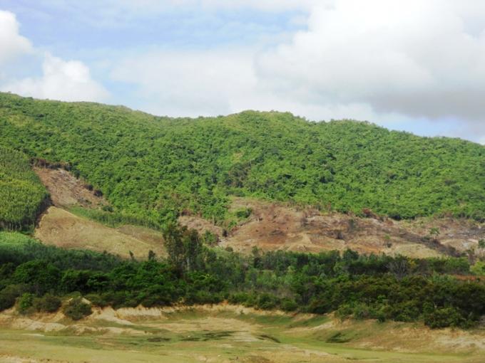 Nhiều diện tích rừng tại khu vực hồ Chí Hòa 2 đang được phát dọn, trong đó không ít diện tích do một số người tự ý phát dọn, lấn chiếm.