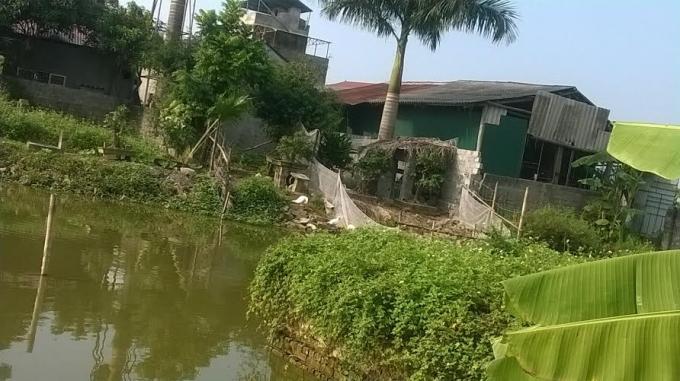 Xưởng sản tăm tre của ông Đỗ Xuân Trường và ông Lê Văn Dân (thôn Hoa Đường) xây dựng trái phép trên đất nông nghiệp vẫn ngang nhiên tồn tại.