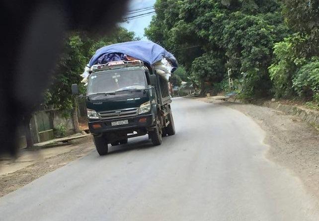 Những chiếc xe tải nhỏ cũng được các lái xe chất đầy nguồn hàng có ngon.