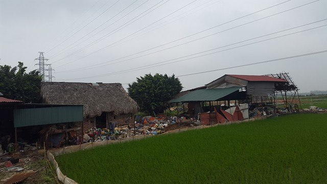 Sở TNMT tỉnh Vĩnh Phúc yêu cầu UBND xã Trung Nguyên báo cáo chi tiết về tình trạng chất thải gây ô nhiễm môi trường.