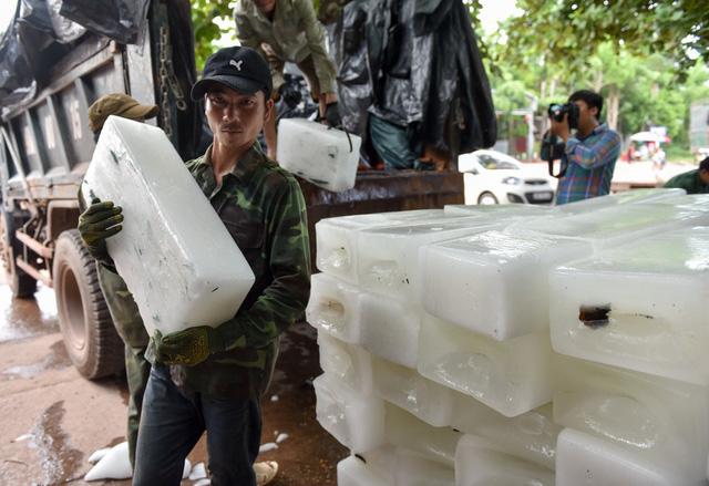 Mỗi ngày, Lục Ngạn dùng tới hàng vạn cây đá lạnh để ướp vải. Xe tải liên tục chở đá lạnh tới các điểm sơ chế.