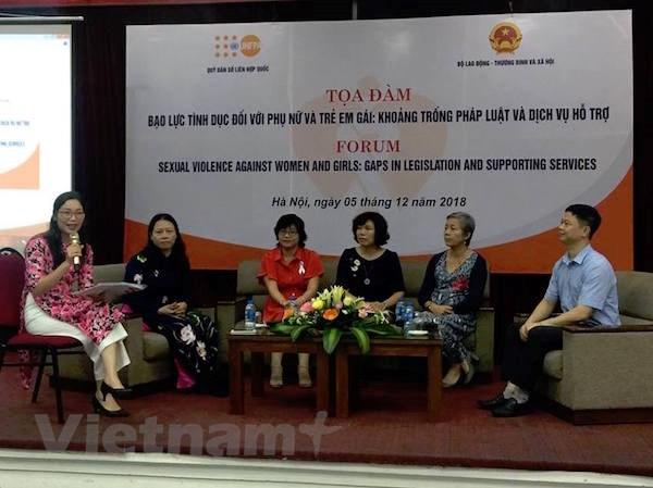 Các chuyên gia cho ý kiến về khoảng trống pháp lý trong xử lý các hành vi bạo lực tình dục. (Ảnh: PV/Vietnam+)