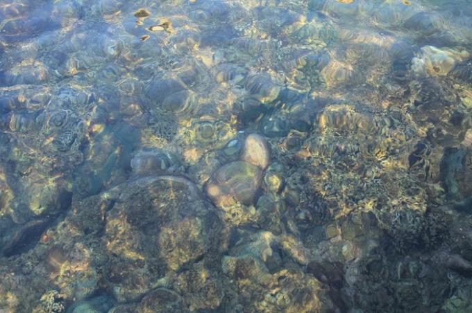 Mặt nước trong vắt hiện lên những mỏm đá, rặng san hô đầy màu sắc.