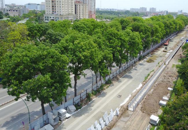 Việc chặt hạ hơn 1.000 cây xanh mới chỉ là đề xuất của Ban Quản lý đầu tư xây dựng các công trình giao thông Hà Nội. (Nguồn ảnh: viettimes.vn)