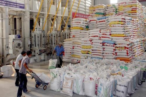 Giá gạo xuất khẩu của Việt Nam ngày càng được cải thiện (Ảnh minh họa: TTXVN)