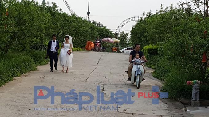 Đây còn là nơi chụp ảnh cưới cho các cặp đôi.