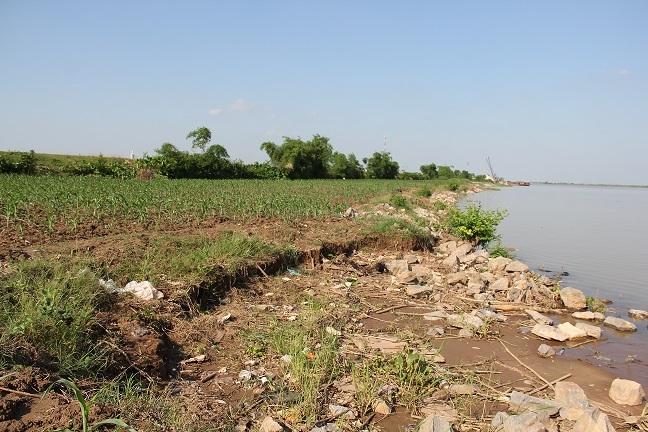 Người dân cho biết trước đây bờ sông ở tận bên ngoài nhưng do tình trạng hút cát tràn lan nên bờ kè sông Hồng đang bị sạt lở nghiêm trọng.