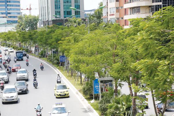 Cây xanh được trồng mới trên phố Xã Đàn.