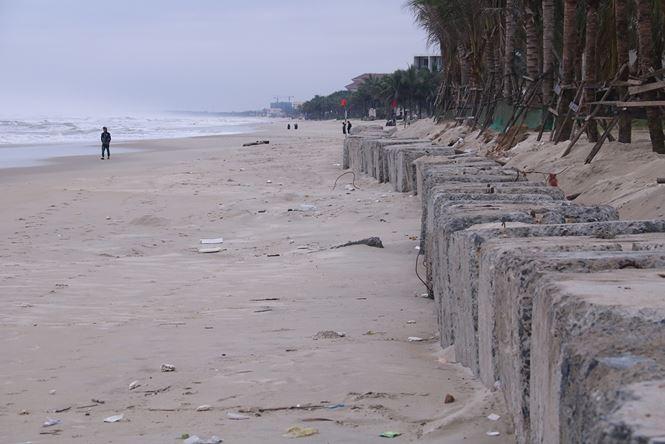 Hình ảnh bờ kè của dự án The Song Đà Nẵng lấn chiếm bãi biển công cộng để đổ đất trồng cây.