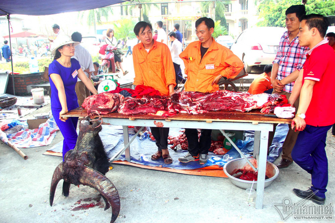 Trước đó, Bộ VH-TT-DL đã nhắc nhở BTC lễ hội vận động, tuyên truyền chủ trâu không giết mổ và bán thịt trâu chọi