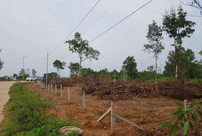 Khu đất trên 70 ha của Tập đoàn 3, ấp Cây Thông Trong, xã Cửa Dương đã bị một nhóm người bán bất hợp pháp.