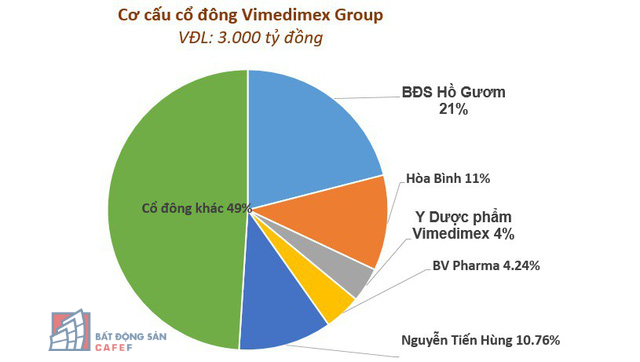vimedimex-group-codong-1560759183008622645300-15607595548251757608648