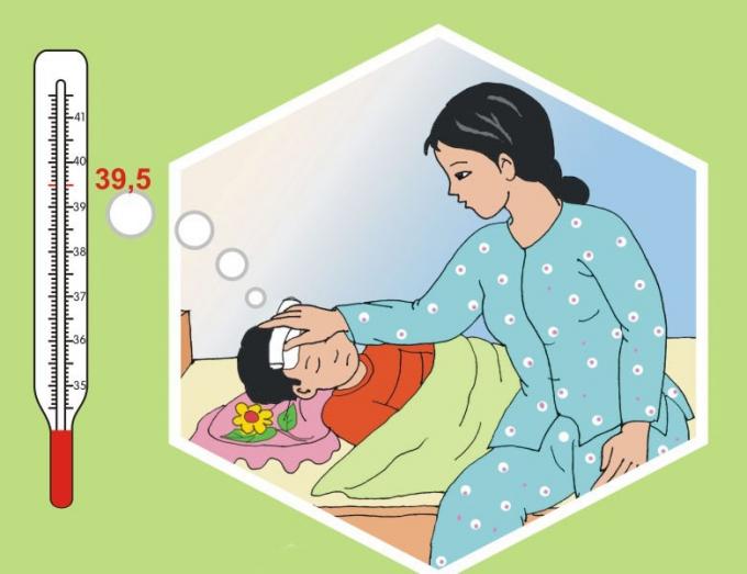 Vi rút viêm não Nhật Bản có từ động vật được lây truyền qua loại muỗi đốt, đốt trẻ và gây bệnh.(Ảnh: Dân trí).