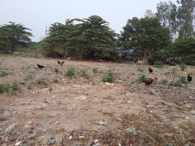 Các hộ dân vẫn sinh sống, thậm chí là nuôi gia cầm trong khu dự án.