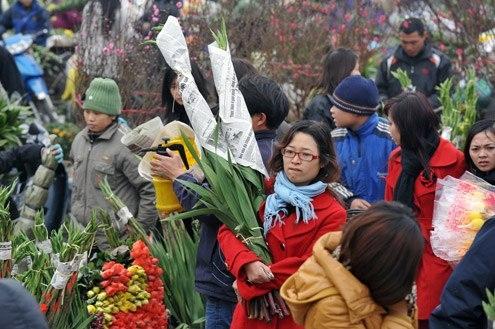 Sẽ tổ chức chợ hoa xuân tại 47 địa điểm trên toàn TP Hà Nội.