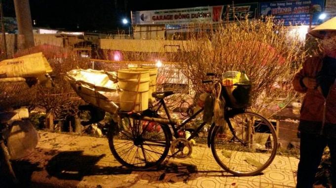 Chợ hoa Quảng An đã trở thành một nét văn hóa của người Hà Nội.