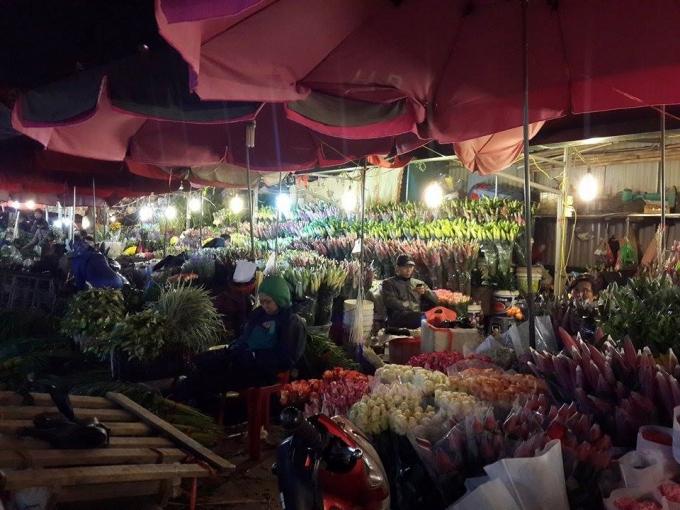 Chợ hoa rực rỡ và sáng bừng dưới ánh đèn.